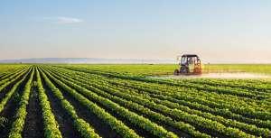 Агрохимикаты и пестициды: гербициды, фунгициды, инсектициды - изображение 1