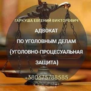 Адвокат онлайн. Услуги адвоката. - изображение 1