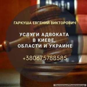 Адвокат по хозяйственным спорам Киев - изображение 1