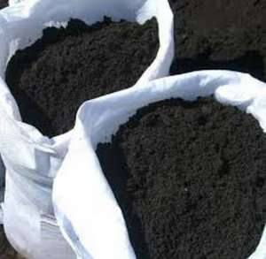Грунт растительный, чернозем. - изображение 1