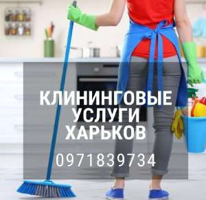 Заказать комплексную уборку дома Харьков. Клининг квартиры в Харькове. - изображение 1