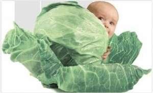 Клініка репродуктивної медицини запрошує сурогатних мам та донорів яйцеклітин - изображение 1