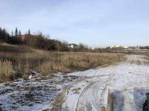 Комерційна ділянка м. Тернопіль. - изображение 1