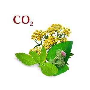 Комплекс СО2 экстрактов Регенерирующий - изображение 1