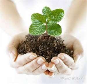 Куплю гербициды, минеральные удобрения Сумы - изображение 1