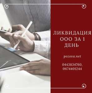 Ликвидация ООО за 1 день Одесса - изображение 1