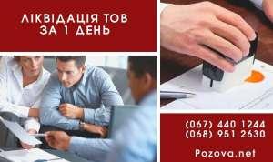 Ликвидация ООО за 1 день путем смены директора. - изображение 1