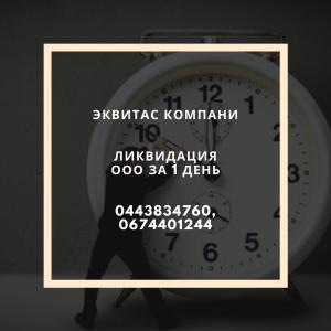 Ликвидация ООО за 24 часа - изображение 1