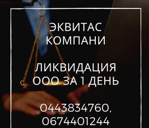 Ликвидация ООО, ФЛП в Киеве - изображение 1