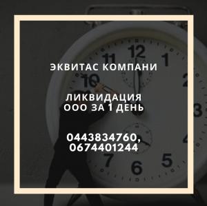 Ликвидация фирмы за 1 день в Харькове - изображение 1