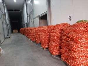 Овощи оптом в Ивано-Франковске. Лук оптом - изображение 1