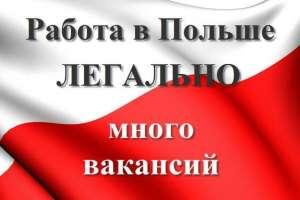Официальное трудоустройство украинцев в Польшу. Новые вакансии - изображение 1