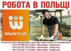 Працівники на меблеву фабрику без досвіду роботи. - изображение 1