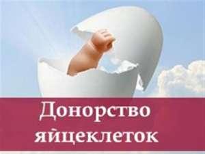 Предложение о сотрудничестве для доноров яйцеклеток и суррогатных мам. Харьков - изображение 1
