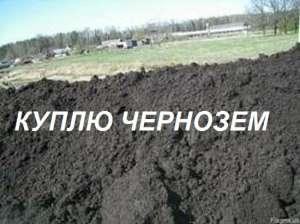 Приму/Куплю Чернозем. Гостомель (Киевская область) - изображение 1