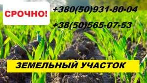Продам ЗЕМЕЛЬНЫЙ ПАЙ в Винницкой области. От хозяина - изображение 1