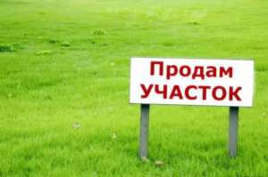 Продам свой участок в Бориспольском районе - изображение 1