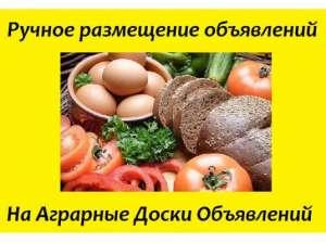 Реклама на агро-досках. АГРО объявления для предприятий Киев - изображение 1