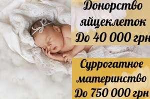 Стать донором яйцеклеток. Николаев. «HappyMama». - изображение 1