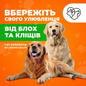Таблетка Bravekto - вбережіть свого улюбленця від блох та кліщів. - изображение 1