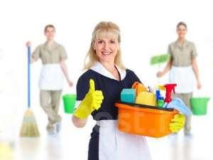 Требуется домработница - изображение 1
