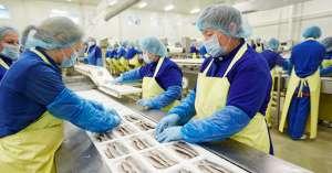 Требуются работники на упаковку рыбы - изображение 1