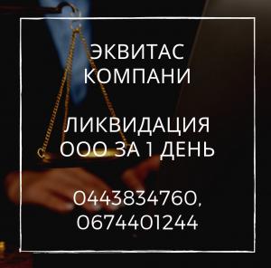 Экспресс-ликвидация ООО Киев. Ликвидируем предпритие путем смены директора. - изображение 1
