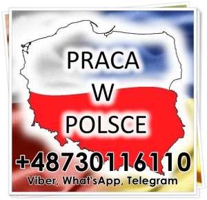 Pобота в Польщi, oфiцiйнo, для чолoвiкiв та жiнoк. - изображение 1